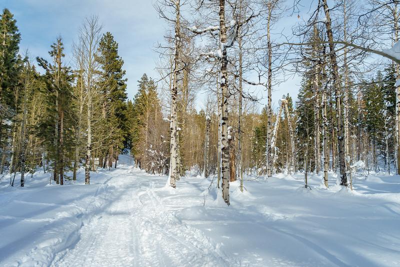 Angora Ridge Rd in the winter