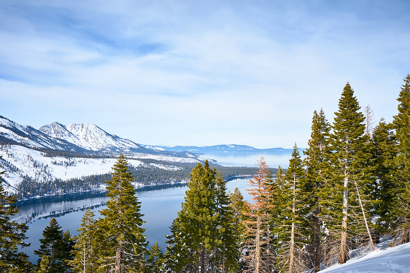 Fallen Leaf Lake and Lake Tahoe from the Angora Fire Lookout