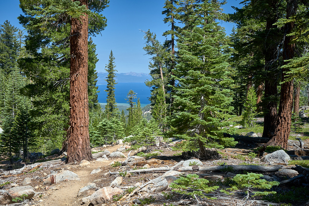 Views of Lake Tahoe from the Star Lake Trail.