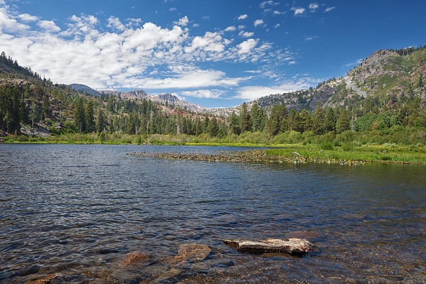 Lily Lake gets its name from the Cow Lilies covering the lake