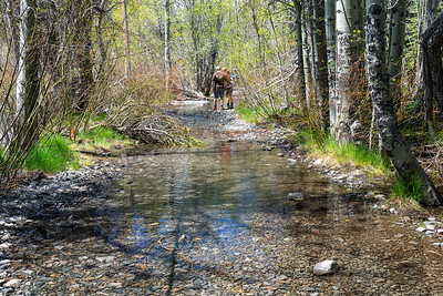 Hikers navigating the beginning of the Glen Alpine Springs Trail, covered in snow runoff.