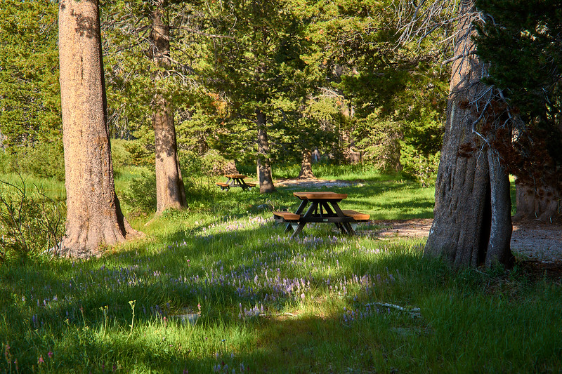 Picnic tables at Webber Lake