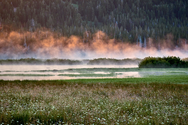 Morning fog in Lacey Valley over Webber Lake