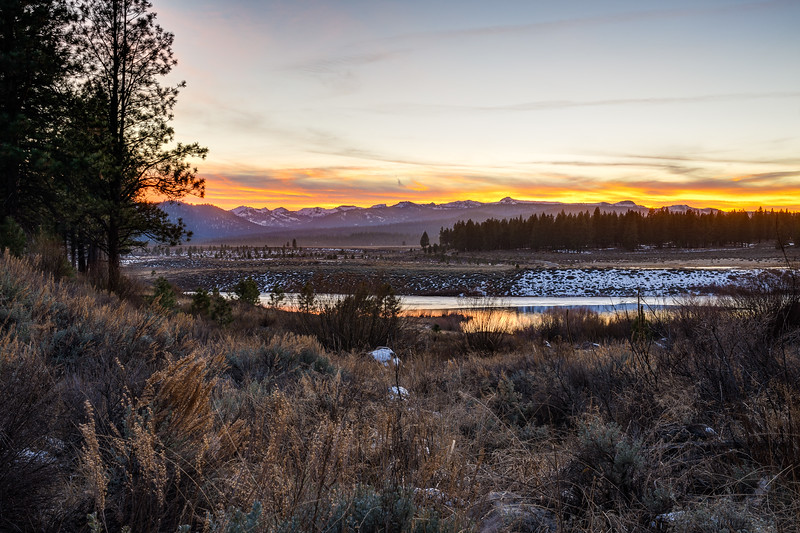 Waddle Ranch Preserve