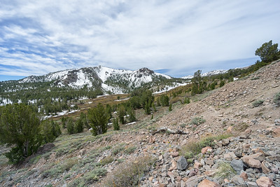 The Mt Rose Summit trail, looking back towards the waterfall just before the beginning of the climb.