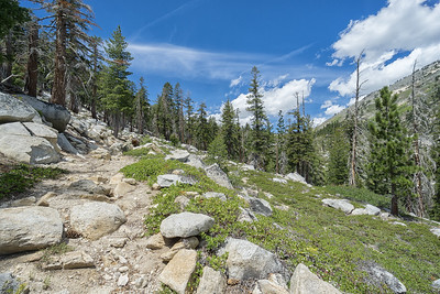 The descent on the Ophir Creek Trail, still above Price Lake