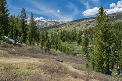 On Lower Meadow Loop, at the north end of Tahoe Meadows, looking south towards Rose Knob Peak