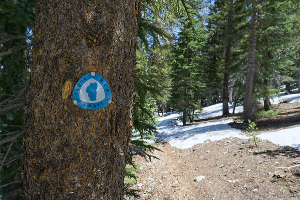 The Tahoe Rim Trail is marked very well.