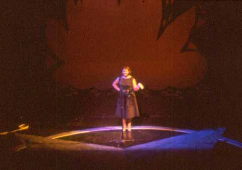 Three One-Act Operas:<br /> Sunday Excursion<br /> Trouble in Tahiti<br /> Riders to the Sea<br /> (various directors and designers including faculty, staff, and students). November 1998, Studio Theatre.