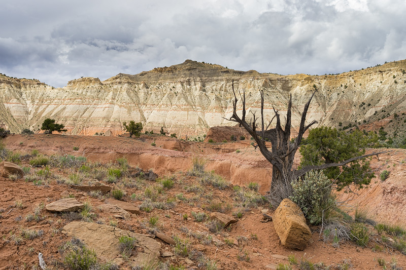 A little bit of sunlight hitting the walls of Kodachrome Basin.