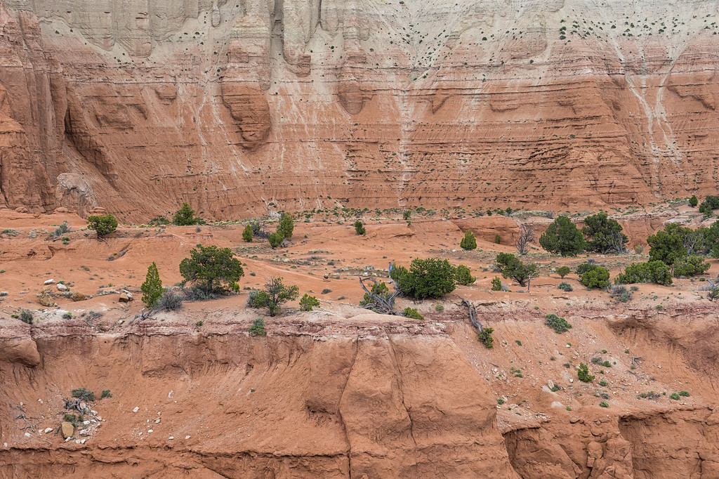 A hiker barely visible on one of the Angel's Palace Trail spurs.