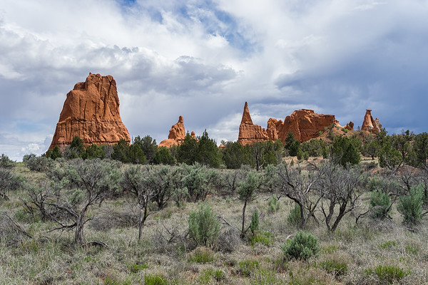 Sandstone formations in Kodachrome Basin.