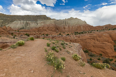 View of Kodachrome Basin from the Angel's Palace Trail.