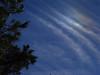 cloudandtree3905