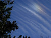 cloudandtree3906