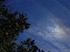 cloudandtree3904