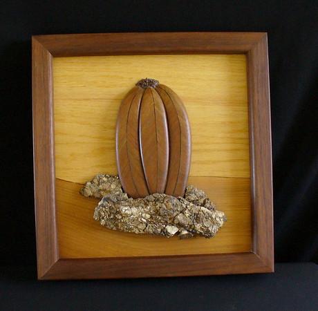 Euphorbia Obesa - oak, walnut and stone