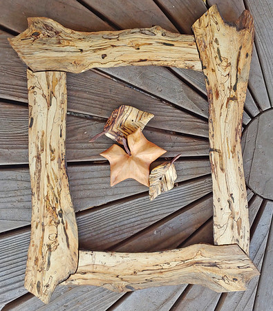 Spalted Elm - 11x14 frame