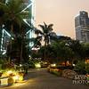 HK Park at Night