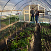 Local hoop house<br /> <br /> Linda & Michelle 70