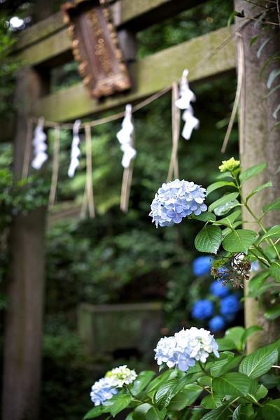 Hikawa Shrine, Akasaka