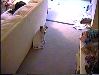 1996 Bailey Trashes Apartment in Newnan & Campmeeting Part 1