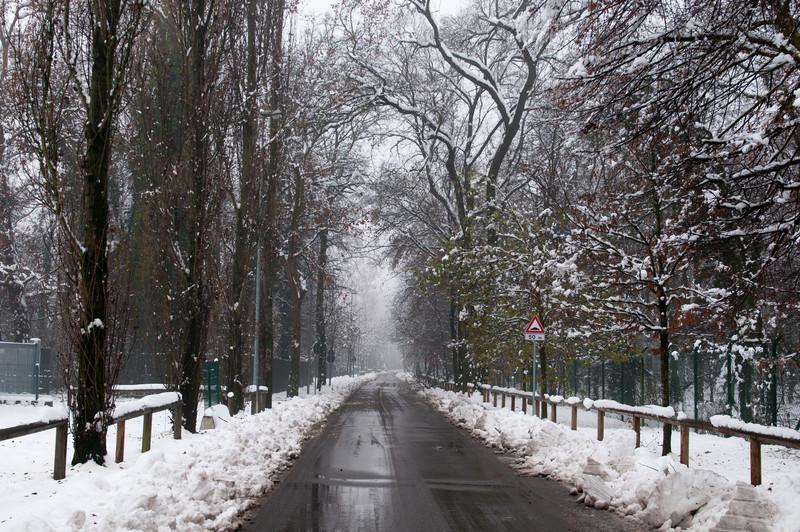 Viale ingresso Vedano