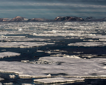 The reports are the overall amount of arctic ice is decreasing, but there was plenty to see