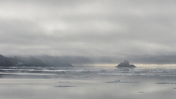 Nelsonøya, Sjøyane, Svalbard