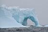 Iceberg and Zodaic