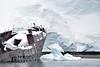 Whaling ship wreck
