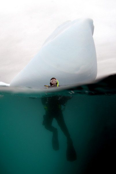 Diver, Pat Dystra, ready to descend by iceberg