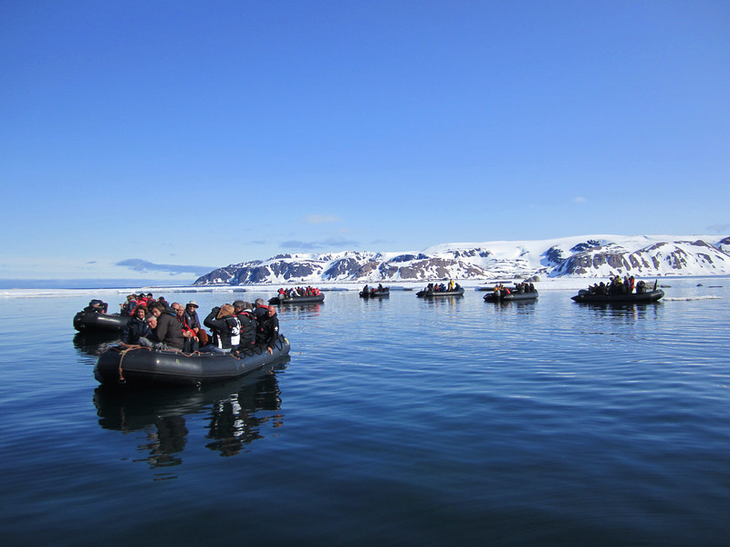 Zodiac excursion in search of Polar Bears