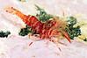 Shrimp: Lebbeus polaris<br /> ID thanks to professor Mary Wicksten