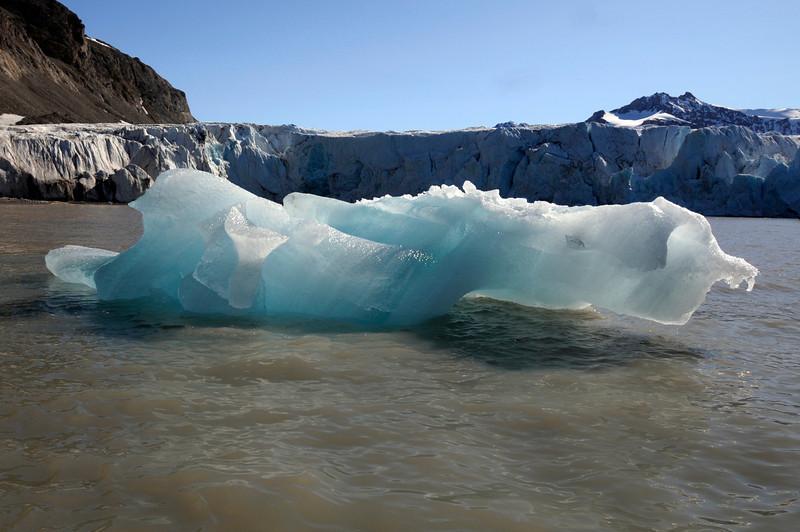Floating Arctic ice