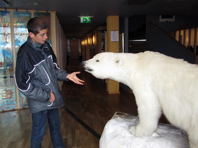 Polar bear greets Evan, in the Longyearbyen City Hall