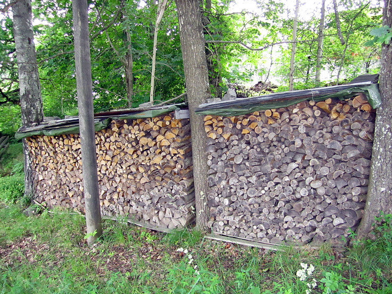 Firewood ready for winter weather