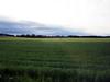 Countryside near Drøbak, Norway
