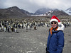 Happy Holidays 2011!<br /> St. Andrew's Bay, South Georgia Island.<br /> Photo by Jeff B.