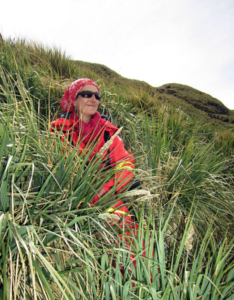 Delphine Aures lounging in Tussock Grass<br /> Expedition Director<br /> Cooper's Bay, South Georgia