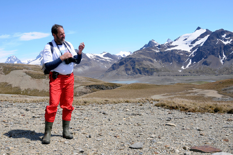 Jeff, a geologist by training, inspects rocks above Fortuna Bay.<br /> South Georgia Island