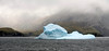 Iceberg<br /> Salisbury Plain, South Georgia Island