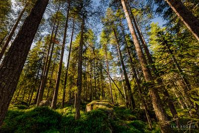 Hidden Norway