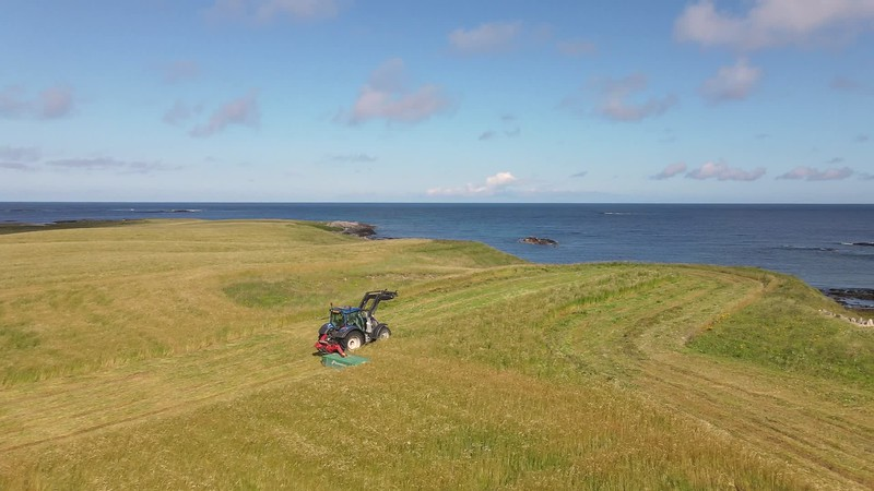 Cutting Harvest with ocean views