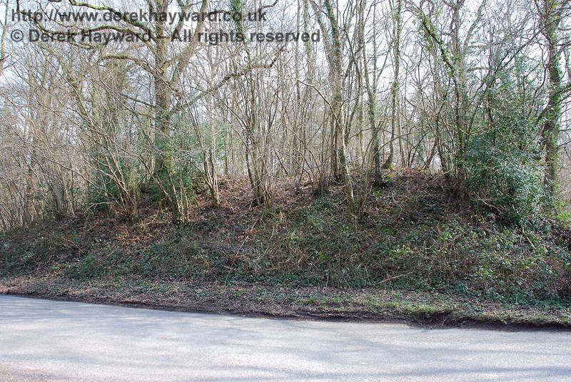 The Ouse Valley Railway embankment on the south side of Copyhold Lane