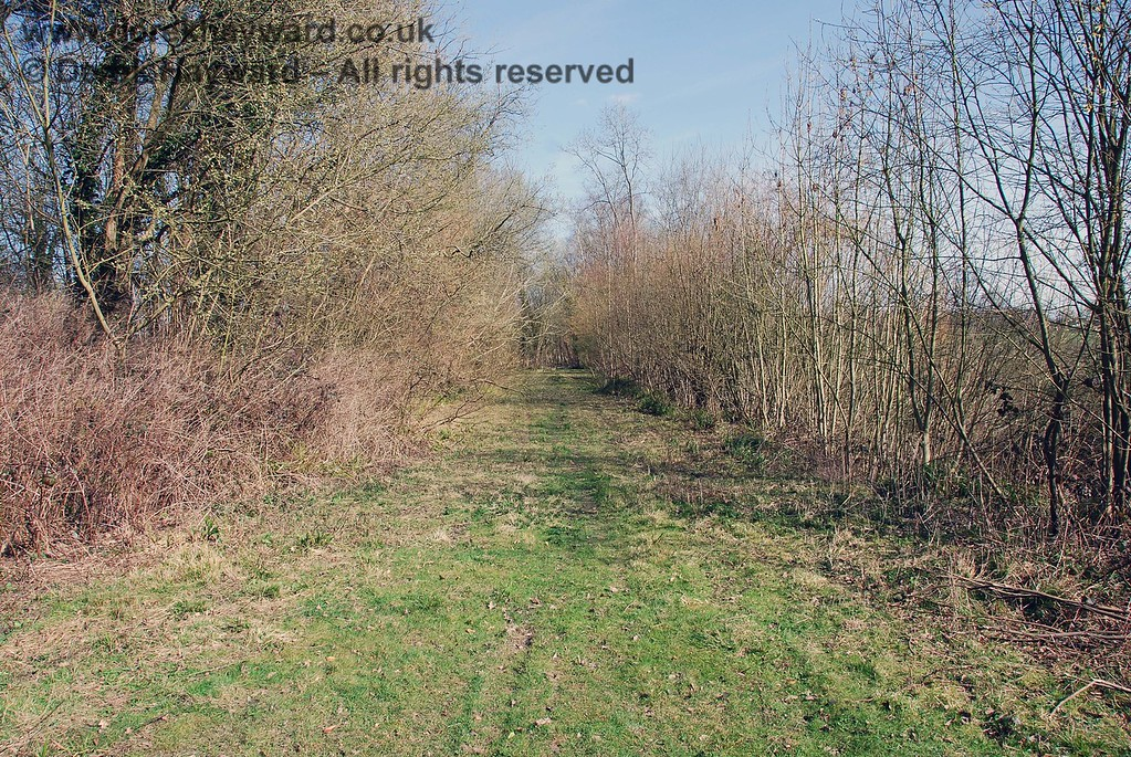 This view looks back east from the farm crossing towards the copse at the end of the embankment.