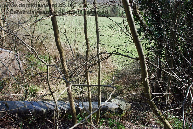 The bridge leads to a gate, but the undergrowth suggests that it may be used only infrequently (there is a clear narrow track under the bridge).