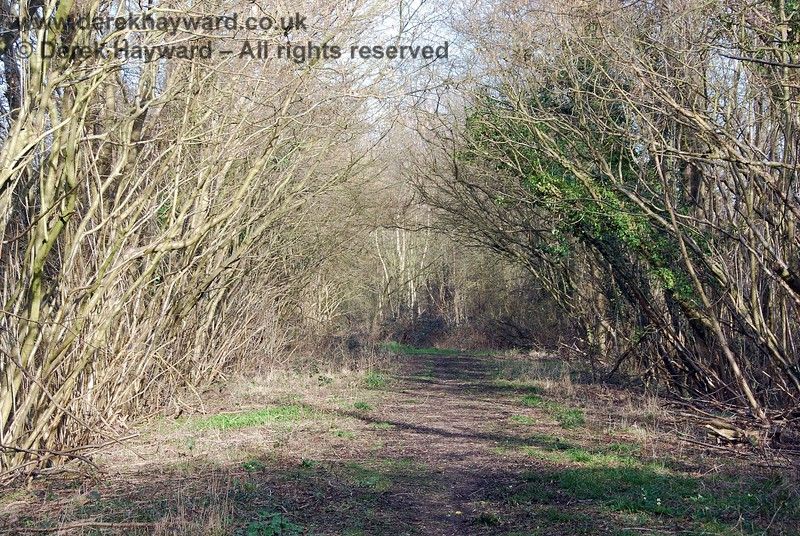 Taken a short distance down the cleared trackbed, this view looks back east towards the stile.  The trackbed is a permissive footpath at this point, shared with the farmer's access to the field on the north side of the track.