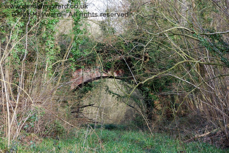 Looking east towards the Great Lywood Farm accommodation bridge, with Lywood Tunnel in the distance (hidden by undergrowth).  This area is wet and overgrown as a consequence of the poor drainage.