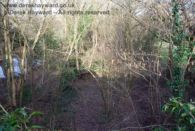 This view looks east along the overgrown shallow cutting leading to the accommodation bridge.